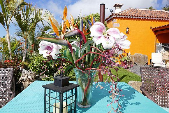 bloemen la palma