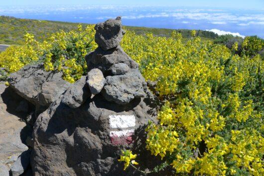 Geo-caching La Palma