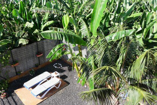 Terras met veel privacy en zon naast het huis.