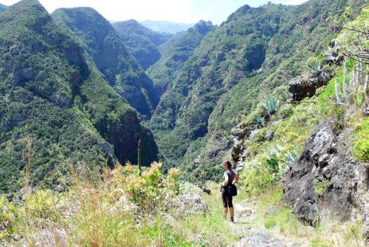 Natuurgebied in noorden van La Palma.