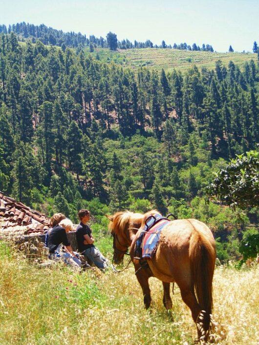 Paardrijden in Tijarafe