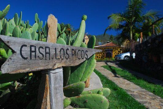 Oprit naar Vakantiehuis Picos.