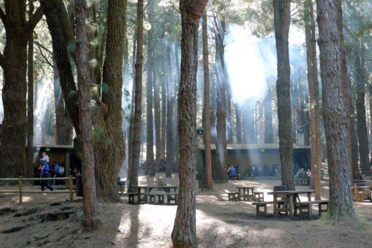 Refugio El Pilar