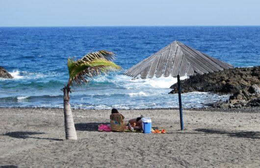 Salamera La Palma