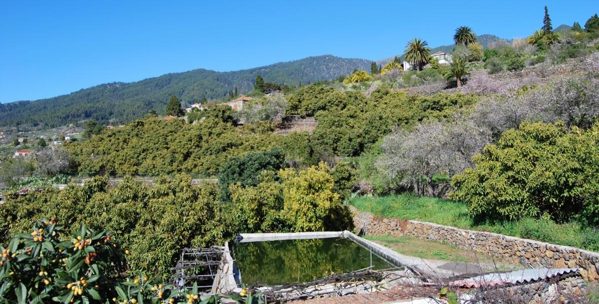 Tijarafe westen La Palma
