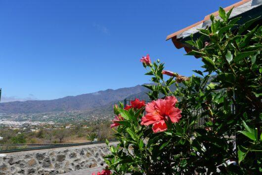 Vakantiehuis Gamez, prachtig en centraal gelegen op La Palma.
