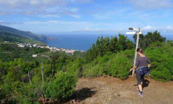 Wandelpad in het noorden van La Palma.